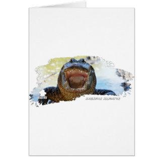 American Alligator 01 Cards