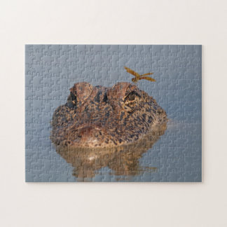 American Alligator and Dragonfly - Wildlife Photo Jigsaw Puzzle