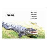 american alligator large business card