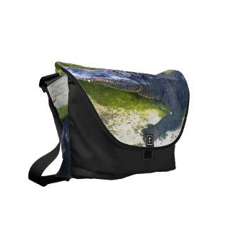 American Alligator Messenger Bags