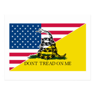 American and Gadsden Flag Postcard