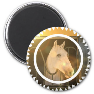 American Andalusian Round Magnet Magnets