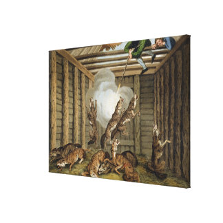 American Anecdote: Shooting the Wolves, engraved b Canvas Print