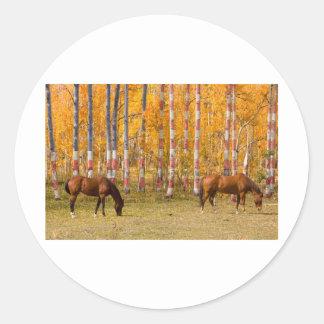 American Autumn Classic Round Sticker