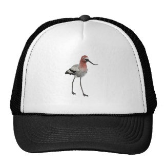 American Avocet Trucker Hat