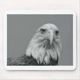 American Bald Eage Mouse Pad