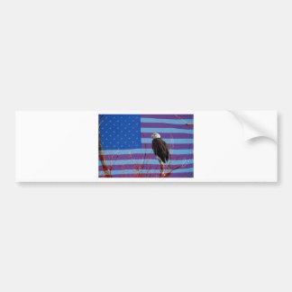 American Bald Eagle 3 Car Bumper Sticker