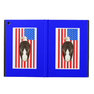 American Bald Eagle And American Flag iPad Air Covers
