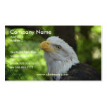 American Bald Eagle Business Card