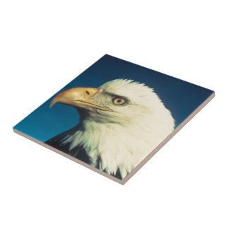 American Bald Eagle Ceramic Tile