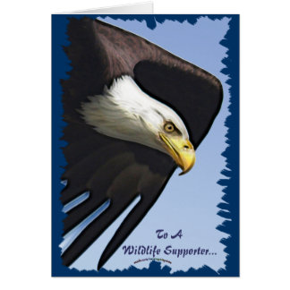 American Bald Eagle Design for Bird-lovers Greeting Card