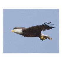 American Bald Eagle Faux Canvas Print