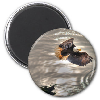 American Bald Eagle Flying Over Ocean 2 Inch Round Magnet