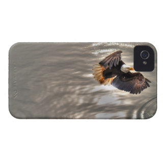 American Bald Eagle Flying Over Ocean iPhone 4 Cover