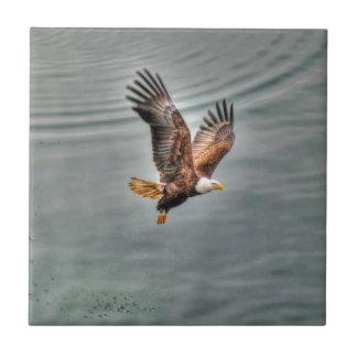 American Bald Eagle Flying Over Ocean Tile