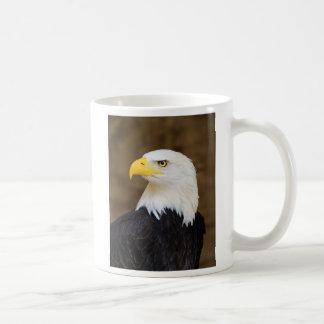 American Bald Eagle Haliaeetus Leucocephalus Coffee Mug