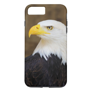 American Bald Eagle Haliaeetus Leucocephalus iPhone 8 Plus/7 Plus Case