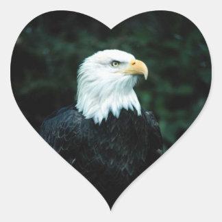 American Bald Eagle Heart Sticker