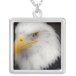 'American Bald Eagle in Portrait' Personalized Necklace