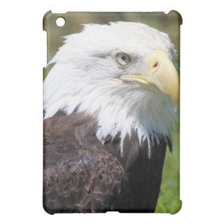 American Bald Eagle iPad Case