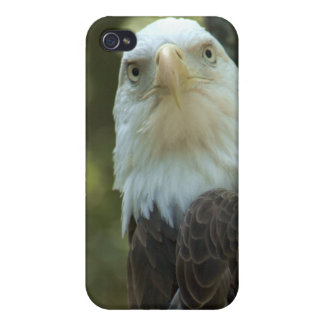 American Bald Eagle iPhone 4/4S Speck Case Case For iPhone 4