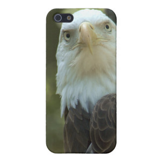 American Bald Eagle iPhone 4/4S Speck Case Case For iPhone 5
