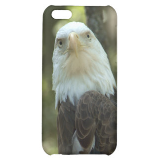 American Bald Eagle iPhone 4/4S Speck Case iPhone 5C Cases