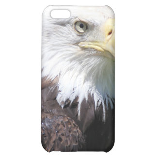American Bald Eagle iPhone Case iPhone 5C Cover