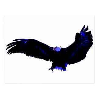 American Bald Eagle Landing Postcard