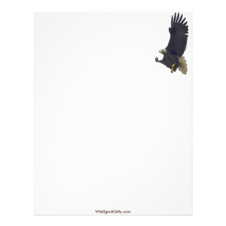 AMERICAN BALD EAGLE Letterhead Design