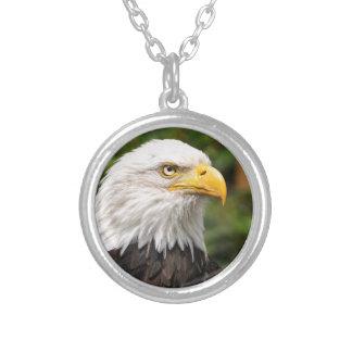American Bald Eagle Jewelry