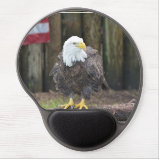 American Bald Eagle Perched on a Log Gel Mousepads