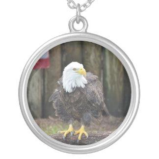 American Bald Eagle Perched on a Log Pendants