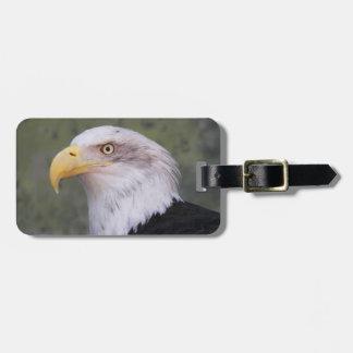 American Bald Eagle Photo Tag For Luggage