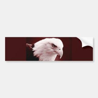 American Bald Eagle Portrait Bumper Sticker