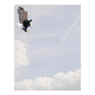 American Bald Eagle Symbol Of The United States Letterhead