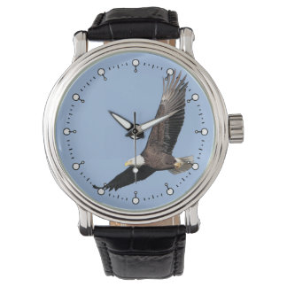 American Bald Eagle Watches