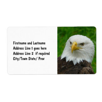 American Bald Eagle - Wildlife Photography Shipping Label