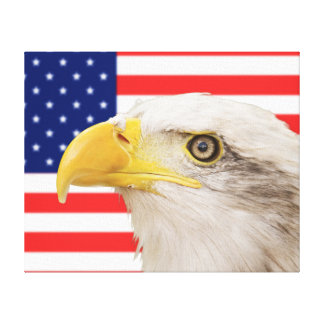 American bald eagle with the American flag Canvas Print
