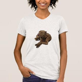 American Bandogge Mastiff T-Shirt