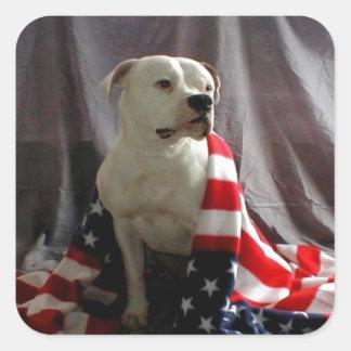 american-beauty-flag-dog-31000.jpg pegatina cuadrada
