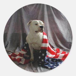 american-beauty-flag-dog-31000.jpg pegatina redonda