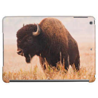 American Bison (Bison Bison) Herd In Teton 2 iPad Air Covers