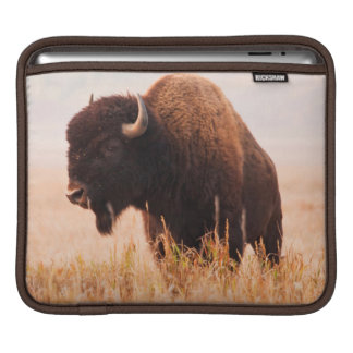 American Bison (Bison Bison) Herd In Teton 2 Sleeve For iPads
