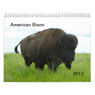 American Bison Calendar