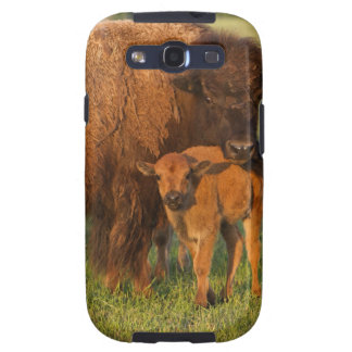 American Bison cow and calf, North Dakota Galaxy SIII Cases