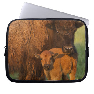 American Bison cow and calf, North Dakota Laptop Sleeve