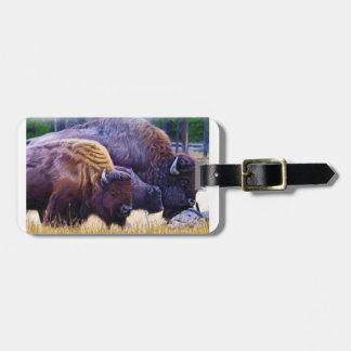American Bison Family Luggage Tag