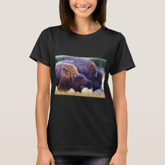 American Bison Family T-Shirt