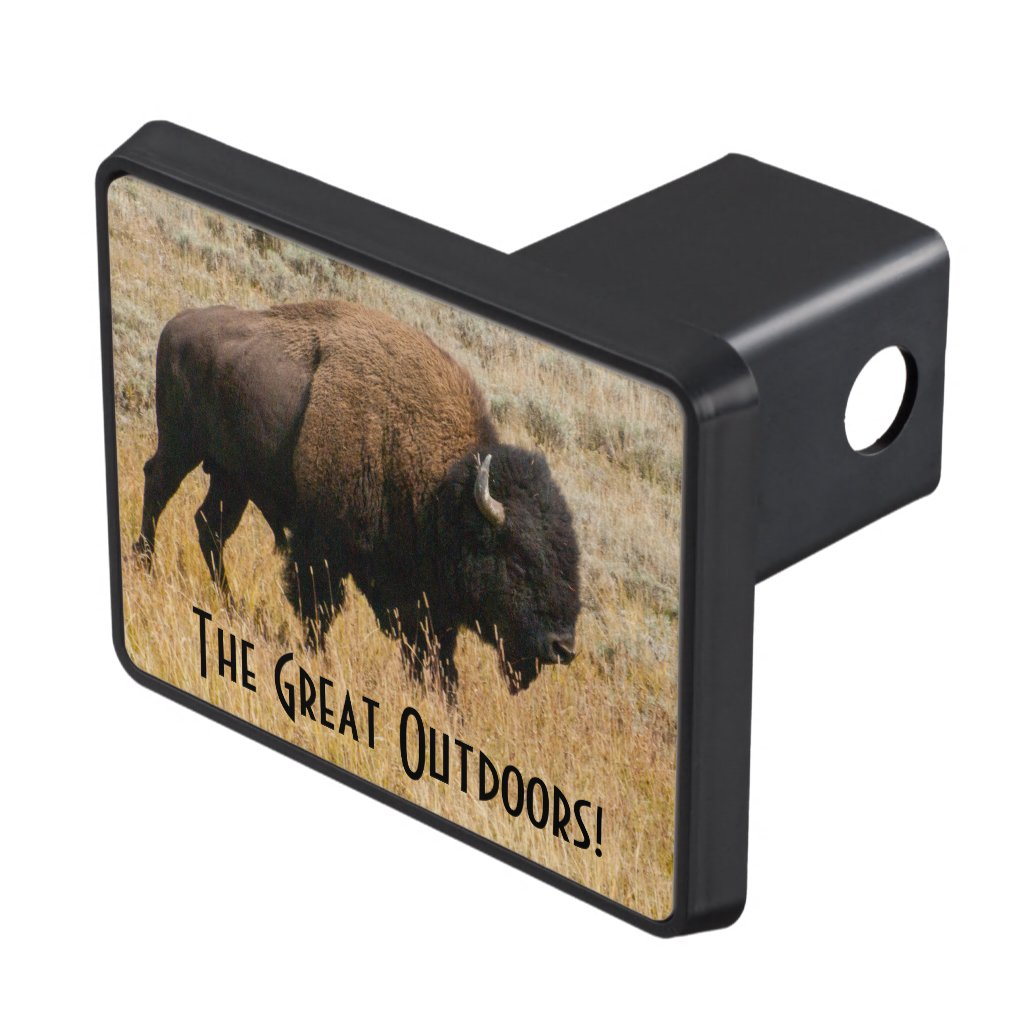 American Bison Grazing In Meadow Grass Photograph Hitch Cover